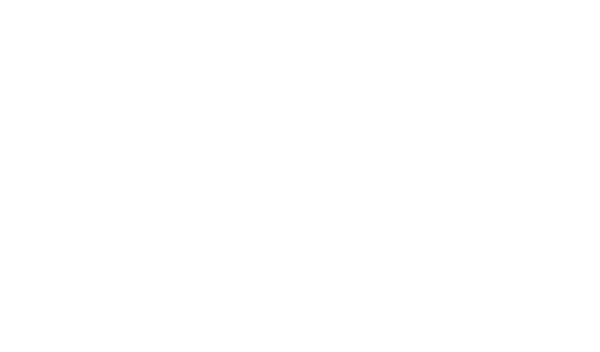 Scientific Instruments, Inc.